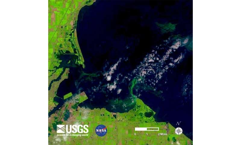 Early season forecast updates for Lake Erie harmful algal blooms