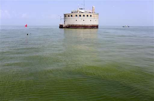 EPA suggests triggers for warning of algae in drinking water