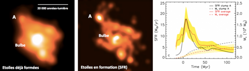 Extremely young stellar clump in the distant universe discovered