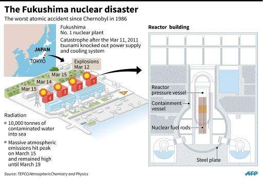 Factfile on the Fukushima nuclear disaster in Japan on March 2011