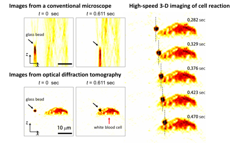 Fast and accurate 3-D imaging technique to track optically trapped particles