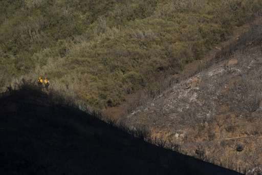 Firefighters stand on a ridge at the division of burned and unburned vegetation in the Angeles National Forest on August 15, 201
