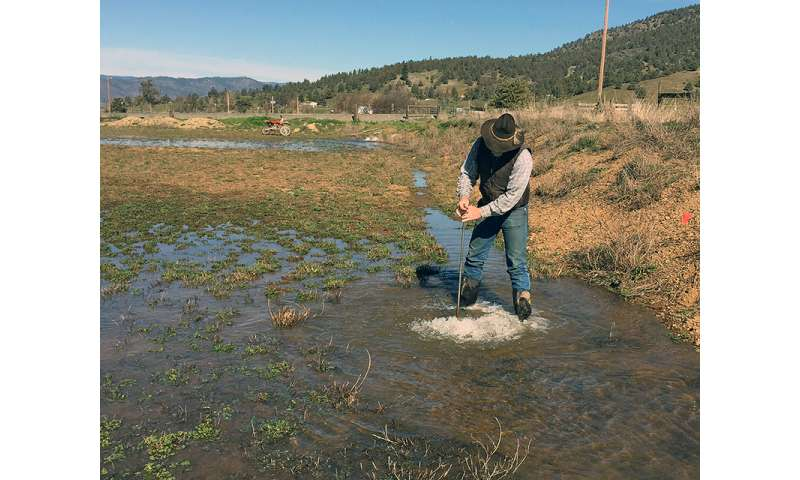 Flooding farms in the winter may help replenish groundwater