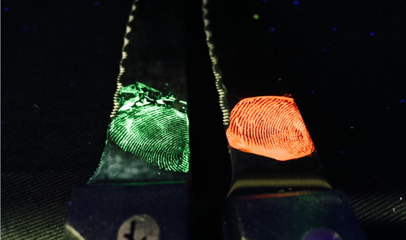 Glowing fingerprints to fight crime