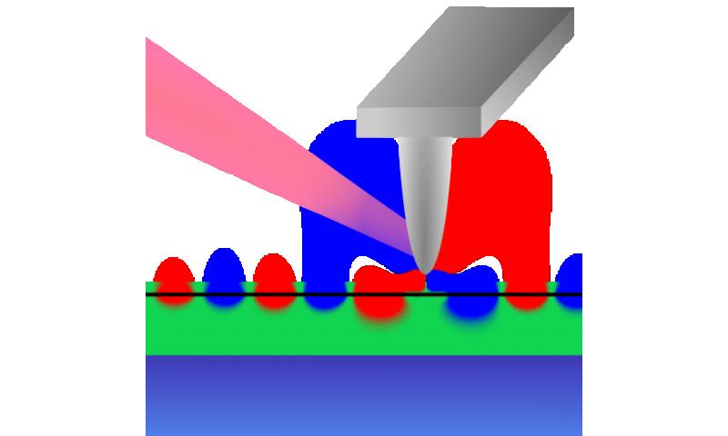 Graphene plasmons go ballistic