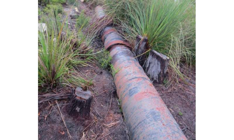 High levels of lead contamination in northeast Tasmanian drinking water