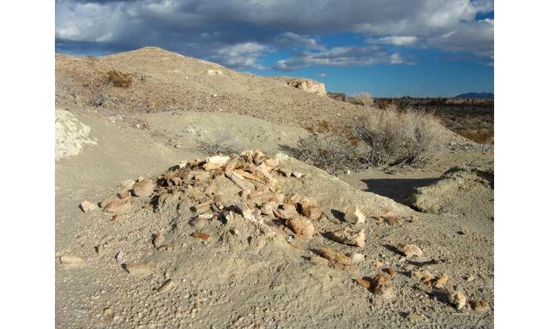 Las Vegas holds key to abrupt climate change