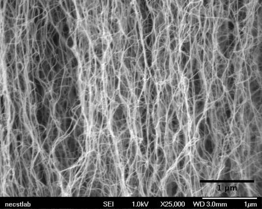 "Nanotube ""forest"" in a microfluidic channel may help detect rare proteins and viruses"