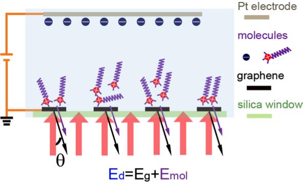Novel diffraction spectroscopy technique to probe electrolyte/electrode interfaces