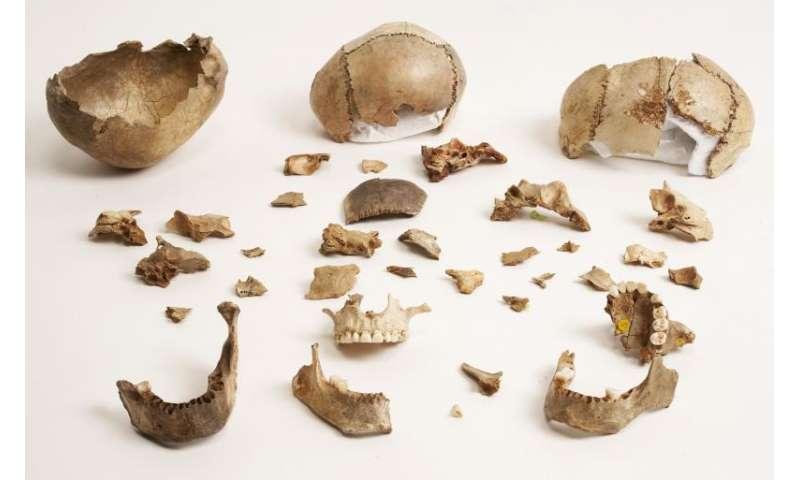 Palaeolithic remains prove cannibalistic habits of human ancestors