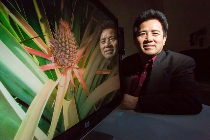 Pineapple genome offers insight into photosynthesis in drought-tolerant plants