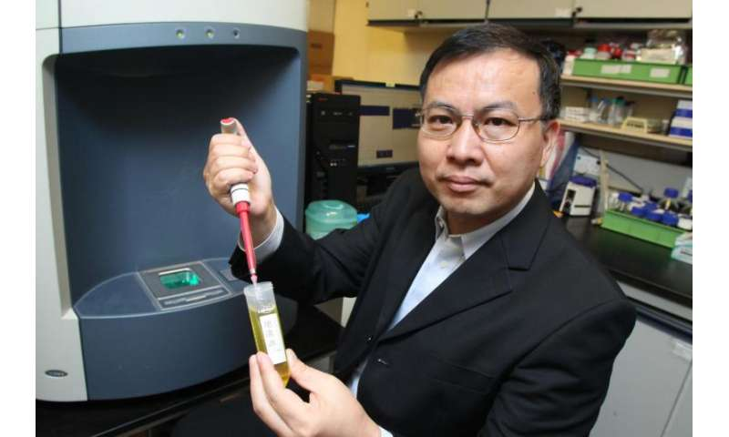 PolyU develops a new method for rapid authentication of edible oils and screening of gutter oils
