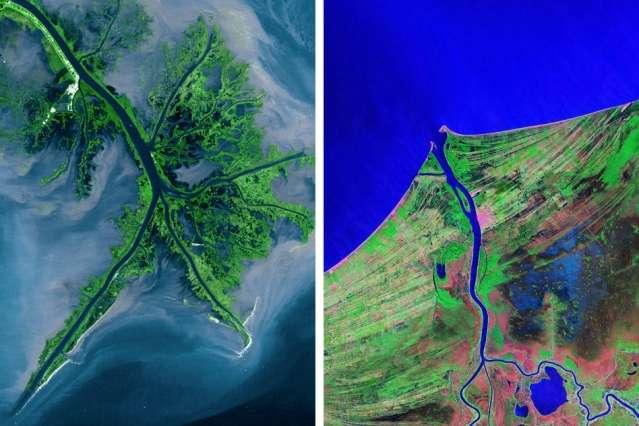 Predicting the shape of river deltas