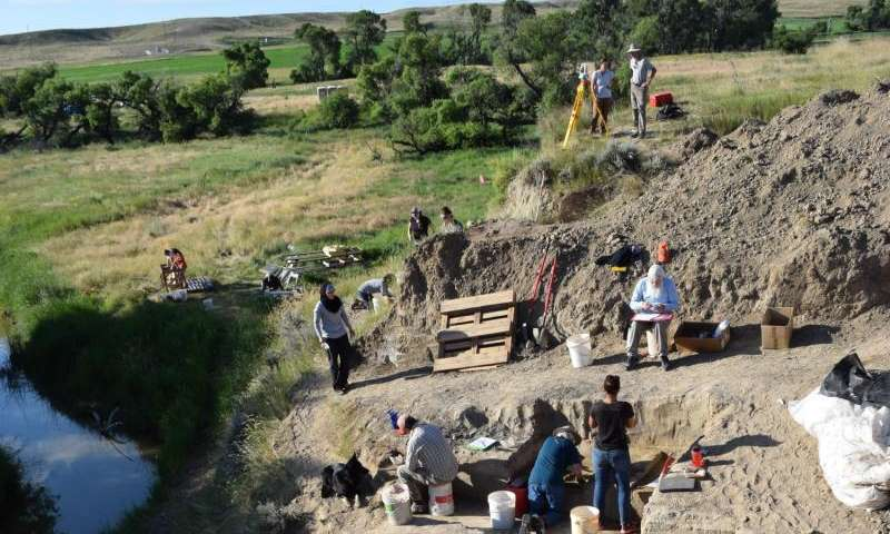 Research backs human role in extinction of mammoths, other mammals