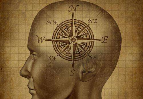Researchers find the missing part of brain's 'internal compass'
