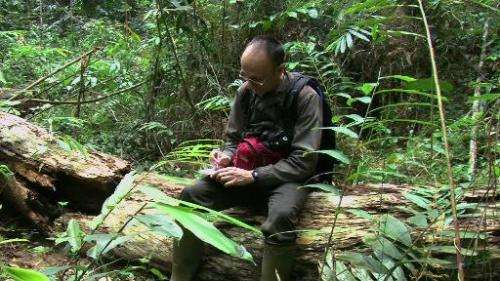 Screengrab from an AFPTV video shot in January 2015 shows French photographer Max Hurdebourcq taking notes in the forest near La