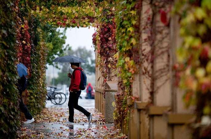 Some scientists are describing 2015 El Niño as a monster climatic event