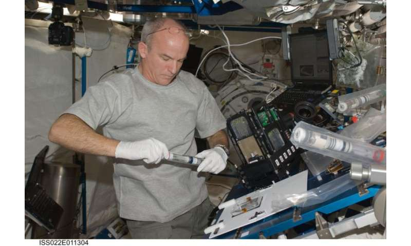 Taking plants off-planet – how do they grow in zero gravity?