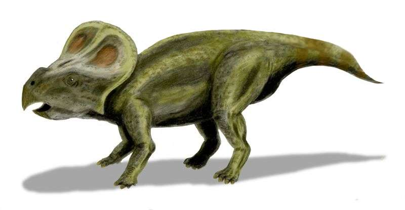 The curse of the horned dinosaur egg