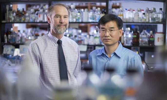 Vanderbilt University Medical Center study sheds light on side effects of COX-2 drugs