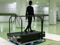 Researchers study feedback control for balancing on two legs