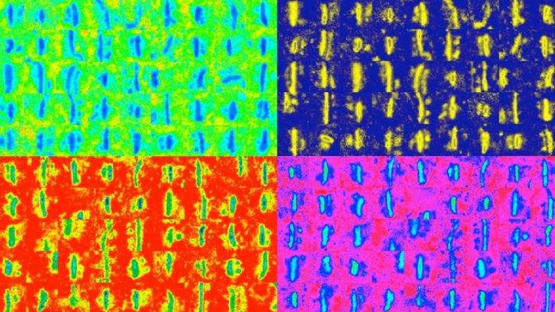 Carnegie Mellon develops new method for analyzing synaptic density