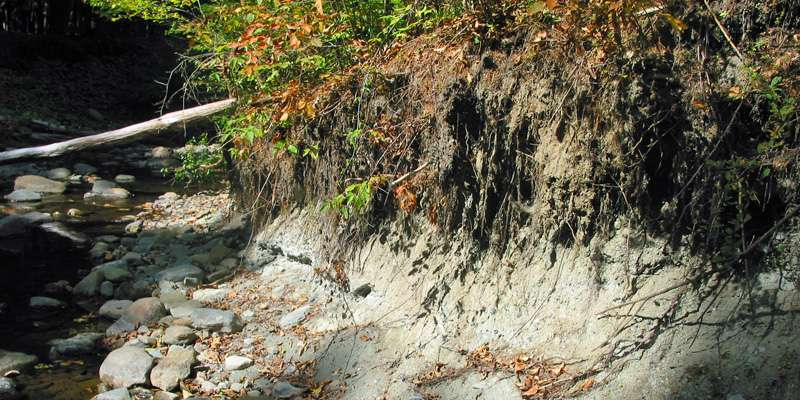 Research suggests that streambank erosion may soak up unwanted phosphorus, rather than cause it