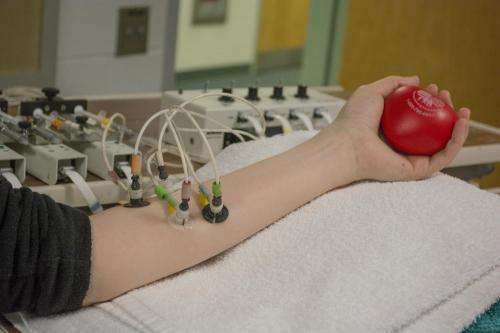 Researchers study role of hydrogen sulfide in regulating blood pressure