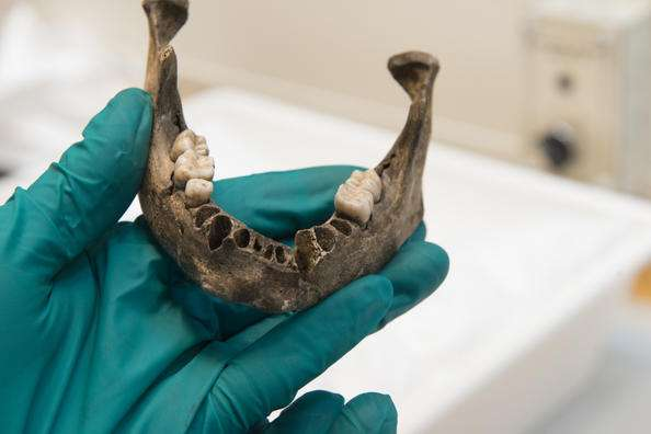 "8000-year-old ""Viste Boy"" sent for DNA analysis"