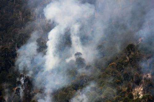 Aerial view of  smoke columns are seen over mountains on the Conguillo National Park in Chile on March 22, 2015