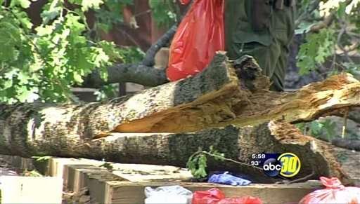 Camper deaths, presence of plague darken summer at Yosemite