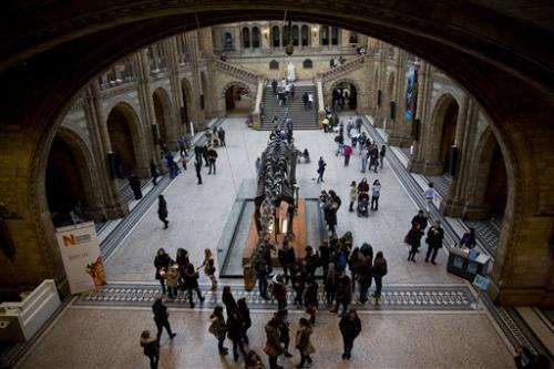 Dinosaur no more: UK museum's Dippy to be retired in 2017
