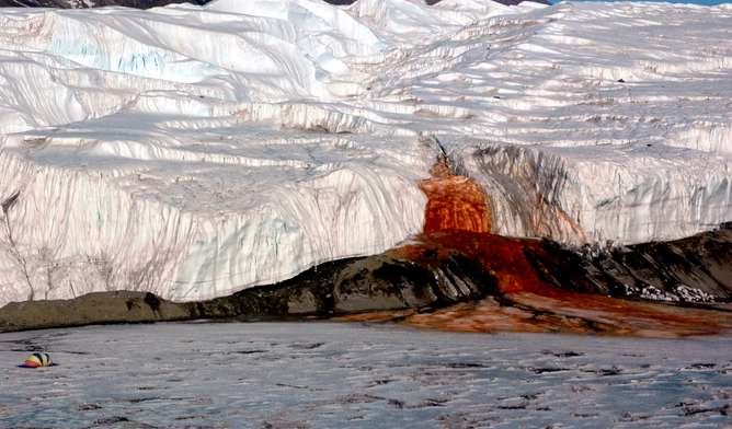 Discovery of microbe-rich groundwater in Antarctica could guide our search for life in space