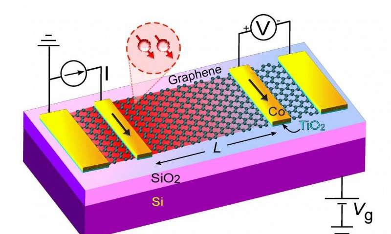 Graphene looking promising for future spintronic devices