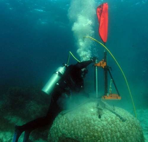 Marine heatwaves tipped to intensify