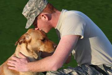 Researcher examines impact of service dogs on returning vets