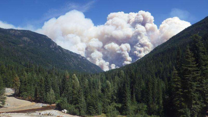 Scientists advise letting wildfires burn when prudent