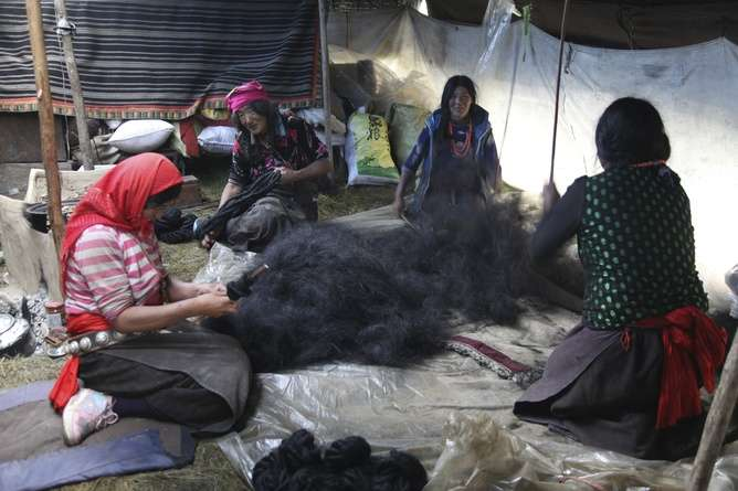 Sino-Tibetan populations shed light on human cooperation