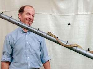Snake bellies help scientists get a grip