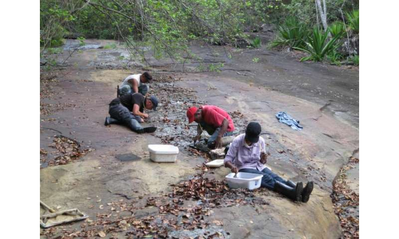 Study will parse evolutionary shift between life in water and on land