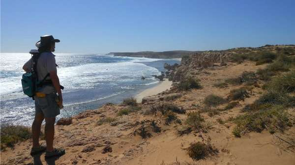 Western Australian landscape isn't as tectonically stable as previously thought