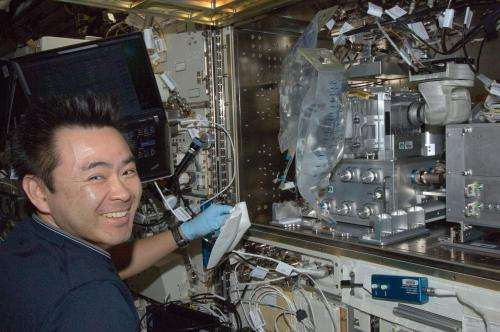 Zebrafish flex their muscles for research aboard the International Space Station