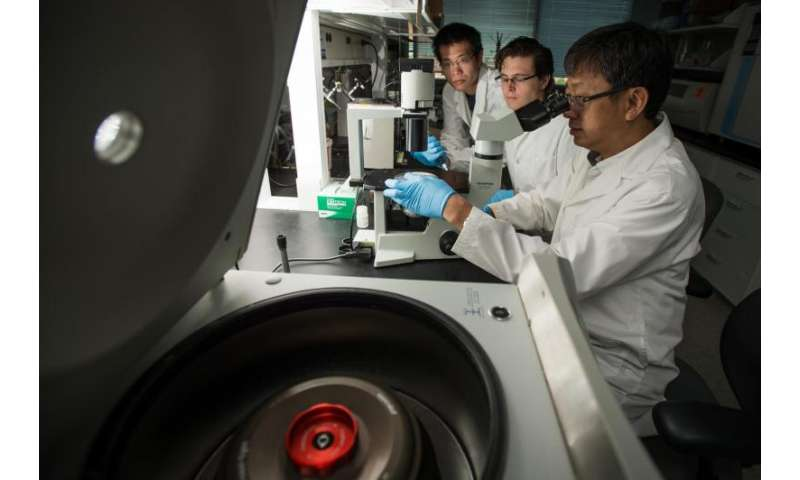 International team discovers natural defense against HIV