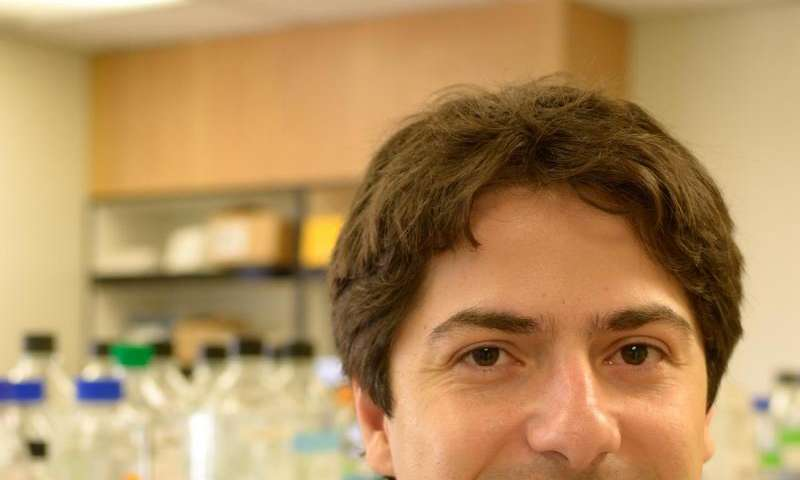 Researchers mimic viral infection in colon cancer stem cells