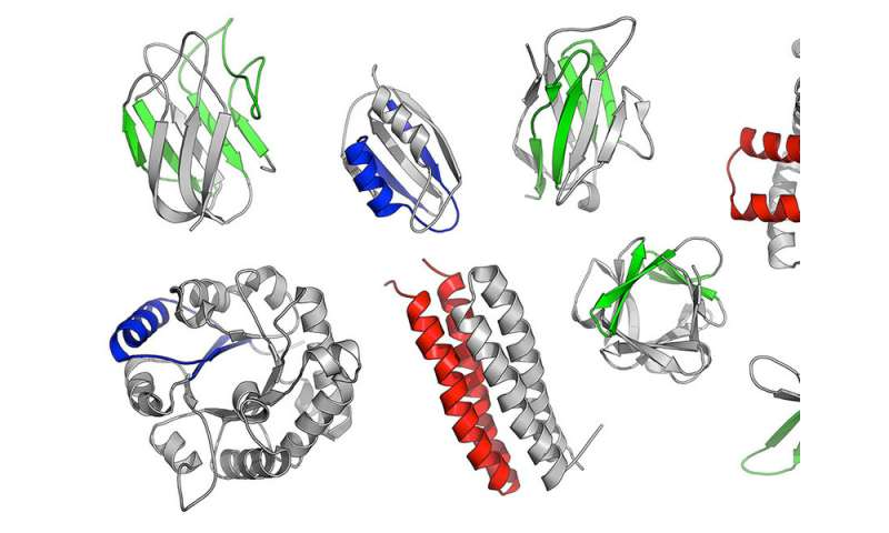 Scientists identify fragments of proteins that already existed billions of years ago