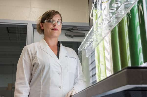 Scientist's research shows promise in creating sustainable algae-based biofuels