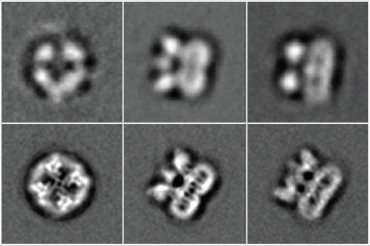 Building a better microscope to see at the atomic level