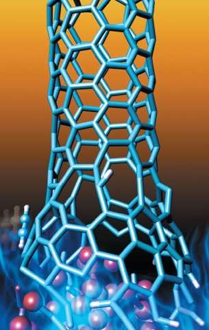 Carbon nanotubes grown in combustion flames