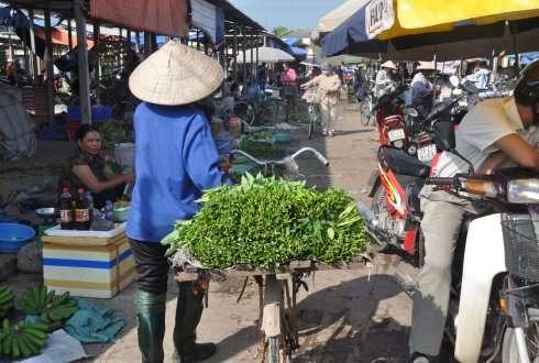 Concentrating sale of vegetables in supermarket no solution for Vietnamese food safety problem