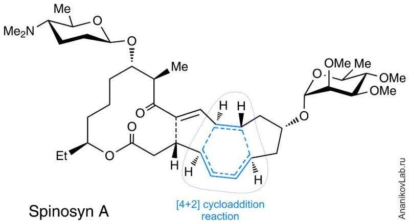 Doing the impossible: enzyme-catalyzed Diels-Alder reaction.